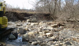 Creek Bank Restoration